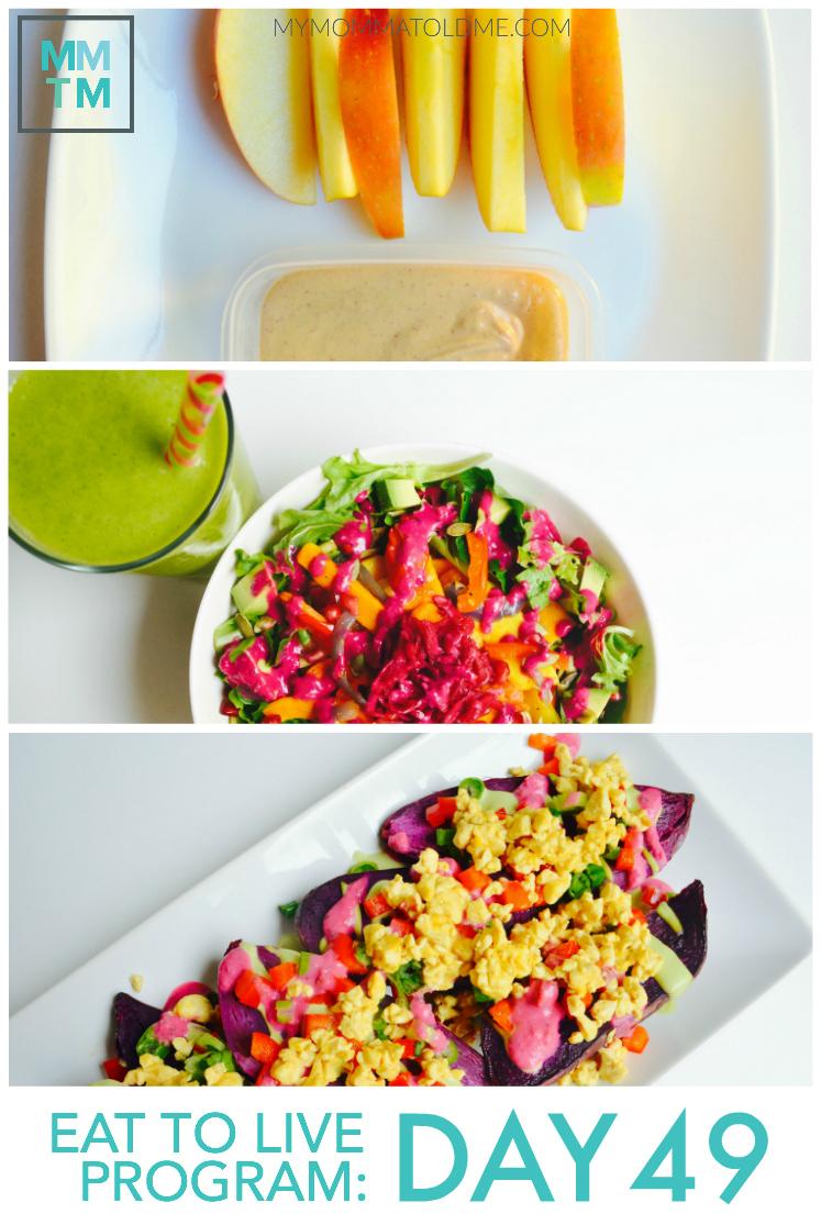 Dr Fuhrman Eat to Live Nutritarian Diet 6 week Program Daily Menu Journal No Oil Recipe