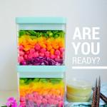 eBook anouncement Dr Fuhrman Eat to Live Program Nutritarian 6 week plan Food Prep Weekly plan